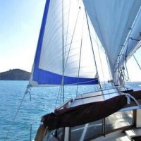 Bay of Islands Sailing Freewind