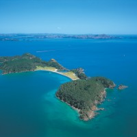 Roberton Island Bay of Islands