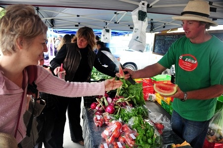 Paihia Farmers Market