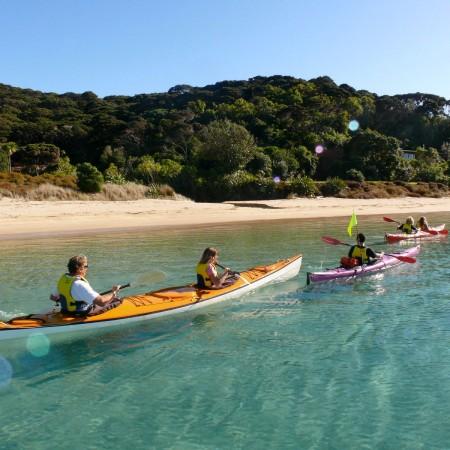 kayakersnearbeach.jpg