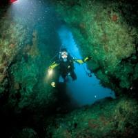 rainbow warrior reef diving