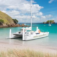Island-Hopper-Day-Sailing-Cruise-Island-Stopover-Waewaetorea-Barefoot-Sailing-Adventures-Bay-of-Islands.jpg